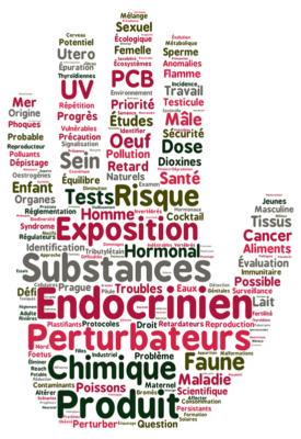 Les perturbateurs endocriniens : quels effets ? - Pharmanity